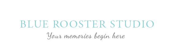 Blue Rooster Studio logo